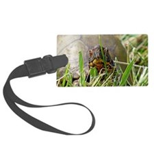 Box Turtle Luggage Tag