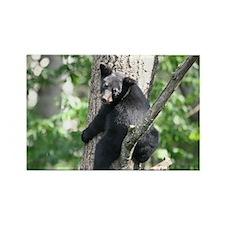 black bear 2007 Rectangle Magnet