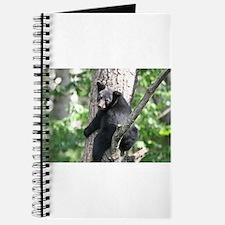 black bear 2007 Journal