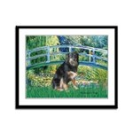 Bridge-Aussie Shep - Tri (L) Framed Panel Print