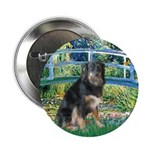 Bridge-Aussie Shep - Tri (L) 2.25