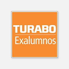 Turabo Exalumnos Naranja Sticker