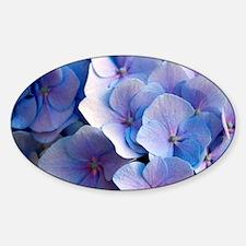 Blue Hydrangea Decal