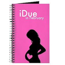 iDue February Journal