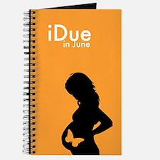 iDue June Journal