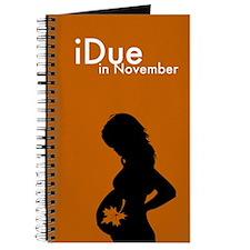iDue November Journal