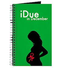 iDue December Journal