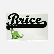 Brice Classic Name Design with Dinosaur Magnets