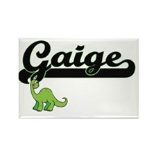 Gaige Classic Name Design with Dinosaur Magnets