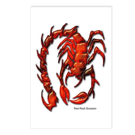 Red Rock Scorpion Postcards (Package of 8)