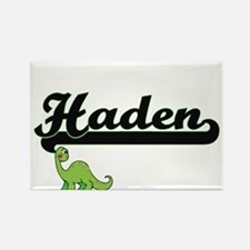 Haden Classic Name Design with Dinosaur Magnets