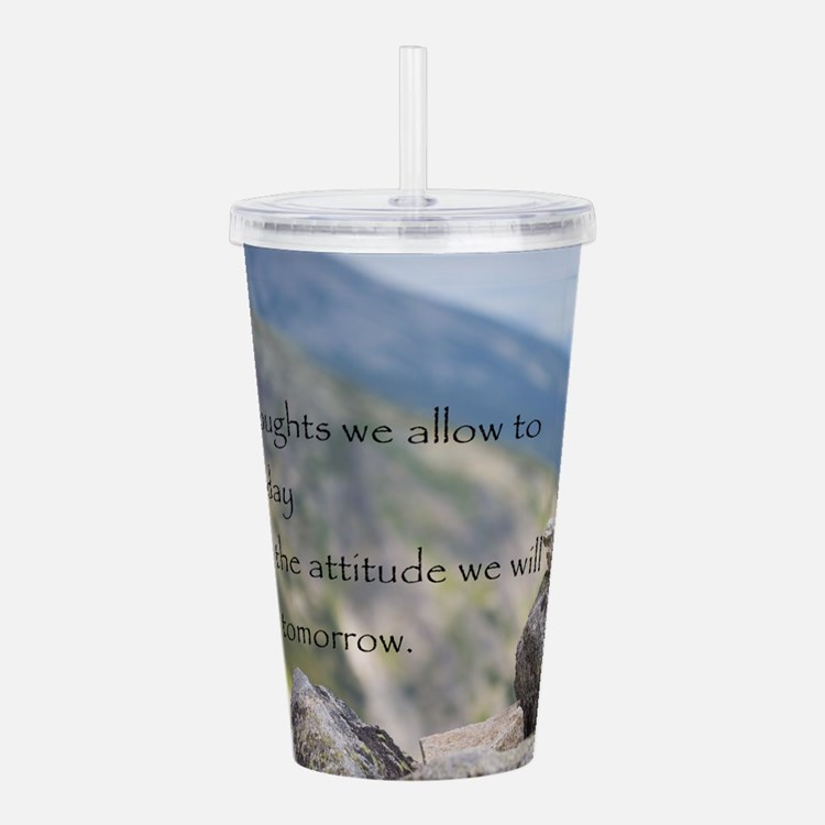 Cute Motivational stones Acrylic Double-wall Tumbler