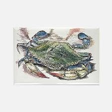Blue Crab Rectangle Magnet