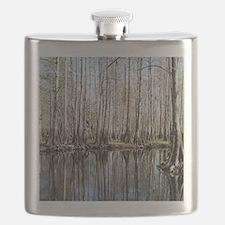 Florida swamp, near Christmas Flask