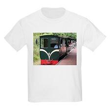 Waterfalls Train, Iguazu, Argentina T-Shirt