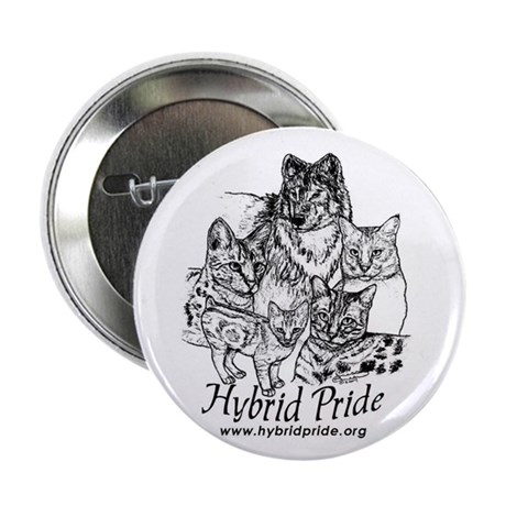 "Hybrid Pride 2.25"" Button (10 pack)"