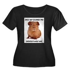 GUINEA PIG T