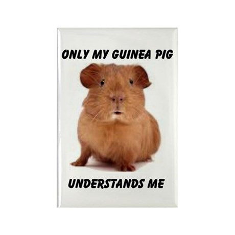 GUINEA PIG Rectangle Magnet