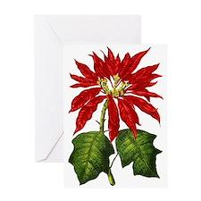 Botanical Poinsettia Greeting Card