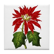 Botanical Poinsettia Tile Coaster