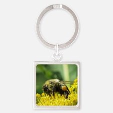 Bee with Pollen sacs Square Keychain
