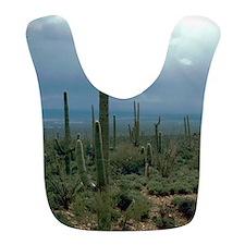 Arizona Desert and Cactuses Bib