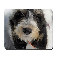 GBGV Puppy Mousepad