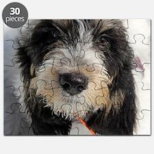 GBGV Puppy Puzzle