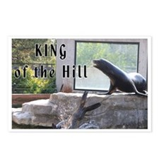 King Seal Postcards (Package of 8)
