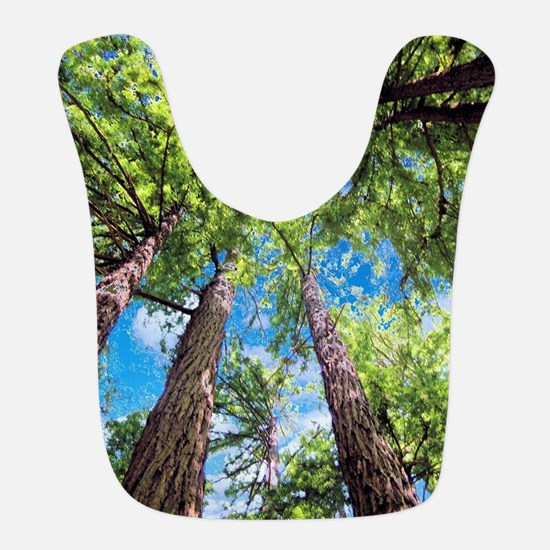 Muir Woods and the Very Blue Sky Bib