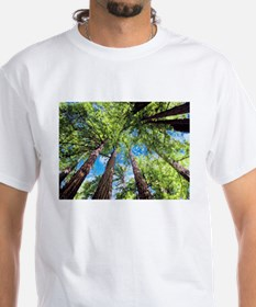 Muir Woods and the Very Blue Sky T-Shirt