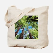 Muir Woods and the Very Blue Sky Tote Bag