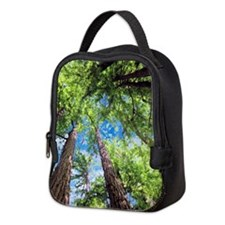 Muir Woods and the Very Blue Sk Neoprene Lunch Bag