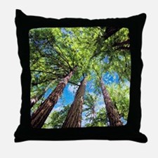 Muir Woods and the Very Blue Sky Throw Pillow