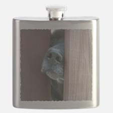 the nose knows Flask