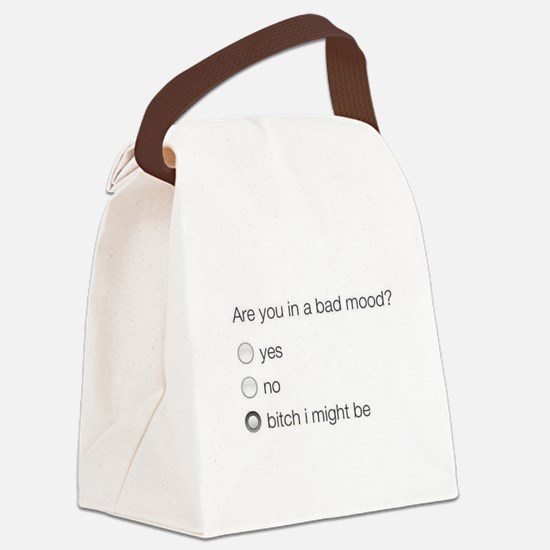 Are you in a bad mood ? Canvas Lunch Bag