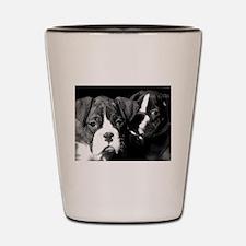 Boxer Puppies Shot Glass