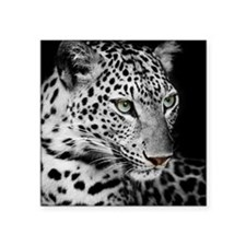 White Leopard Sticker