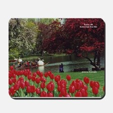 Swan Boats in Spring - Mousepad