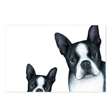 Dog 128 Boston Terrier Postcards (Package of 8)
