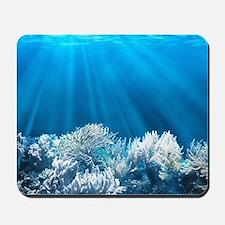 Tropical Reef Mousepad