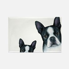 Dog 128 Boston Terrier Magnets