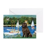 Sailboats & Newfoundland Greeting Cards (Pk of 20)