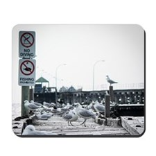 Birds on Abandoned Jetty Mousepad