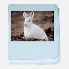 Arctic Hare baby blanket