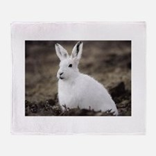 Arctic Hare Throw Blanket