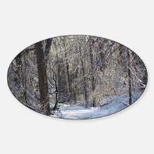 Icy Snow Trail Decal