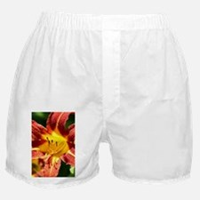 Cool Lilies Boxer Shorts
