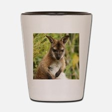 Skippy Shot Glass