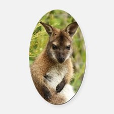 Skippy Oval Car Magnet